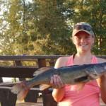 Walleye 29.5 inches